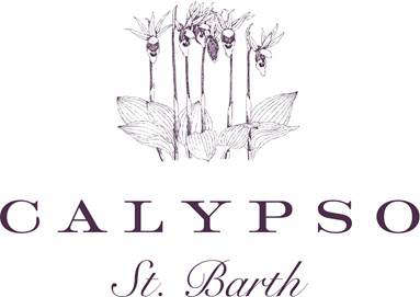 5 Favorites Home Collection from Calypso St Barth portrait 8 9