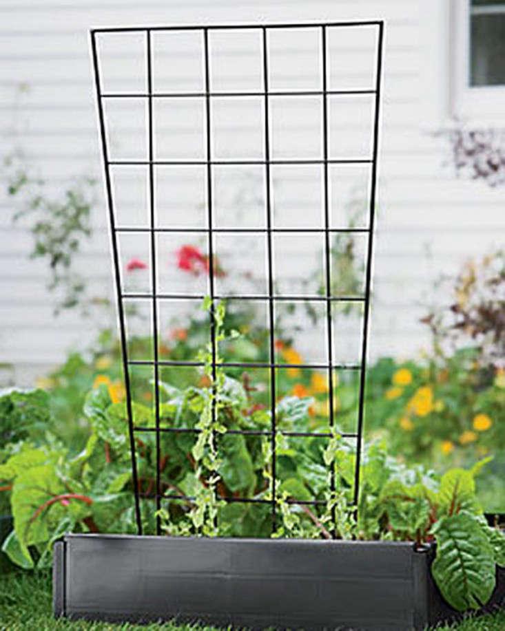 metal-vegetable-garden-trellis-gardenista