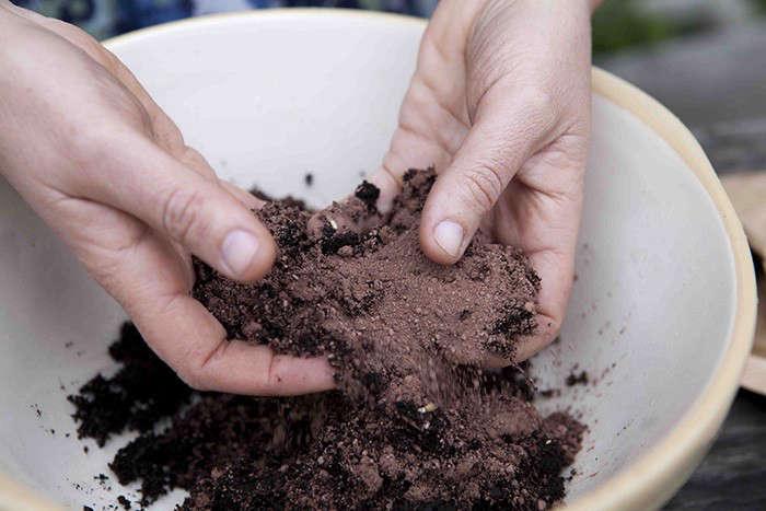 seed-bombs-recipe-gardenista