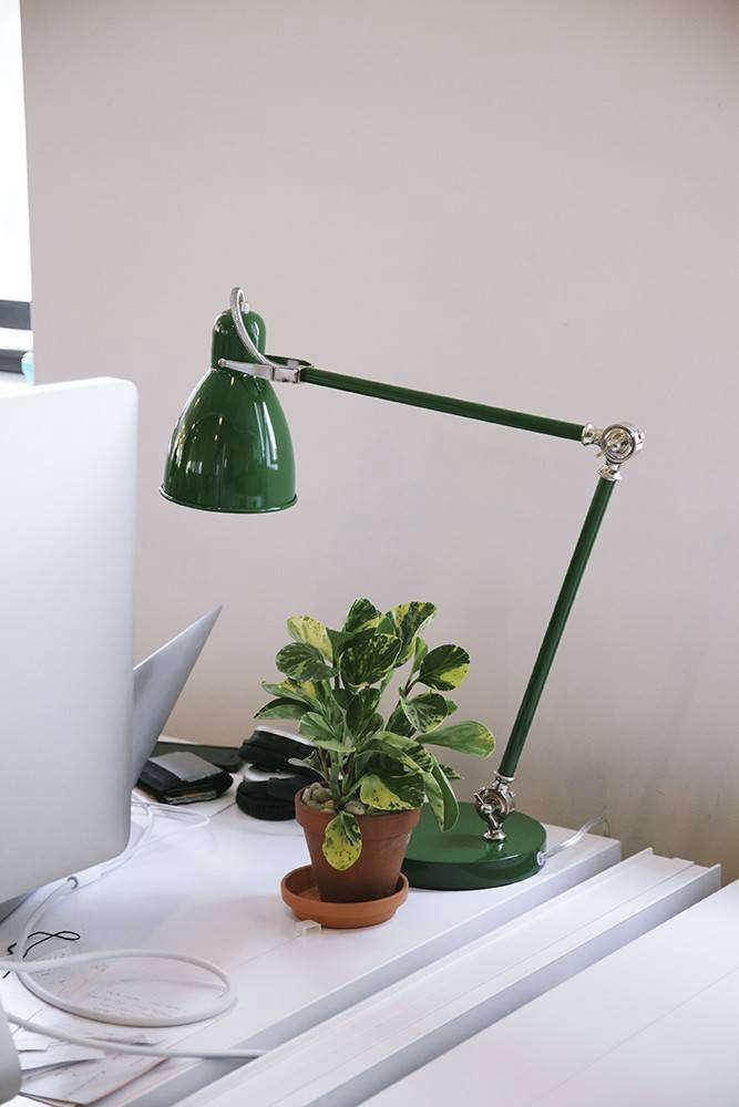 Office Hours 10 Indoor Plants To Dress Up A Desktop