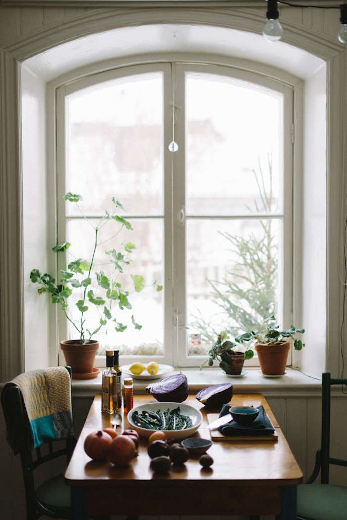 babes-in-boyland-kale-salad-window-pelargonium-gardenista