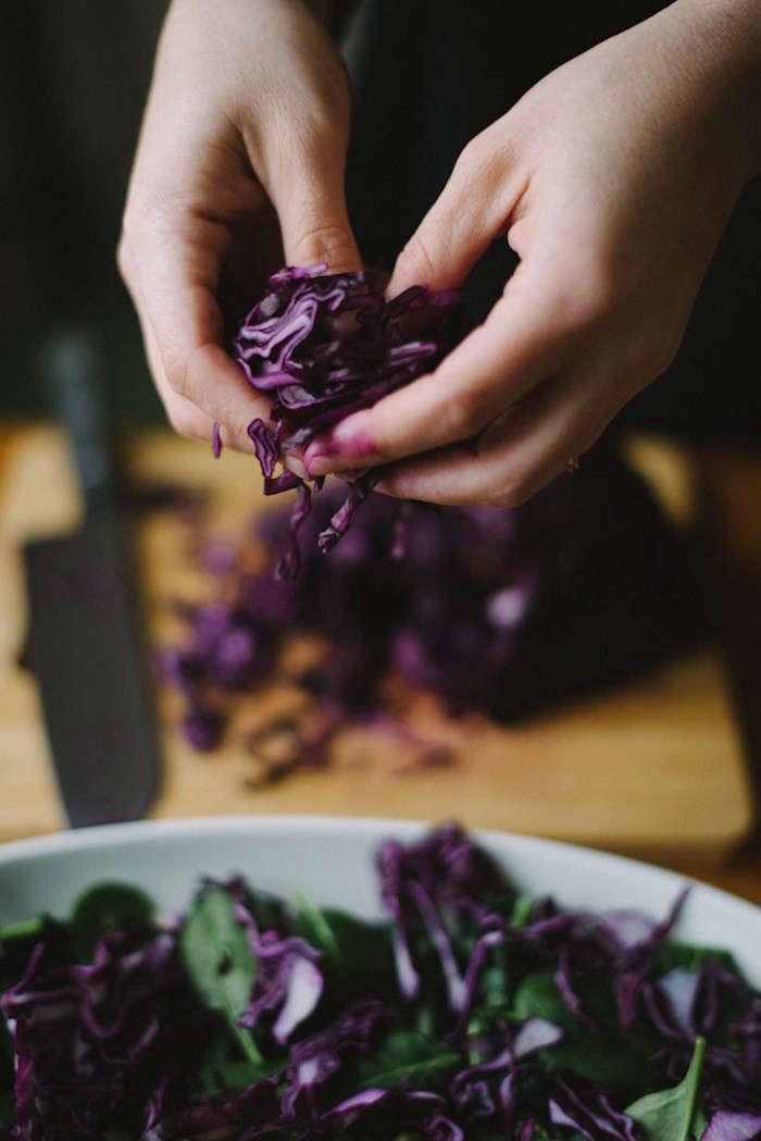 babes-in-boylnad-purple-cabbage-salad-gardenista