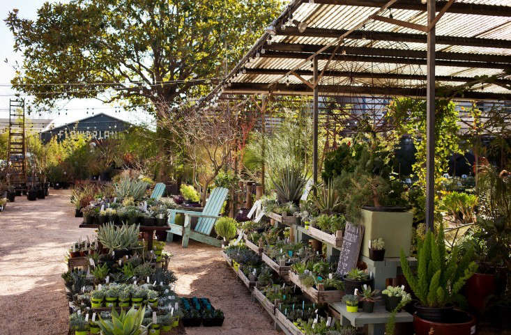 flowerland nursery plant selection-