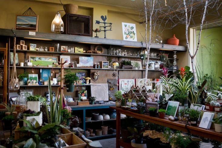 flowerland nursery shop interior-