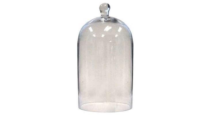 glass-cloche-terrarium-garden-dome-gardenista