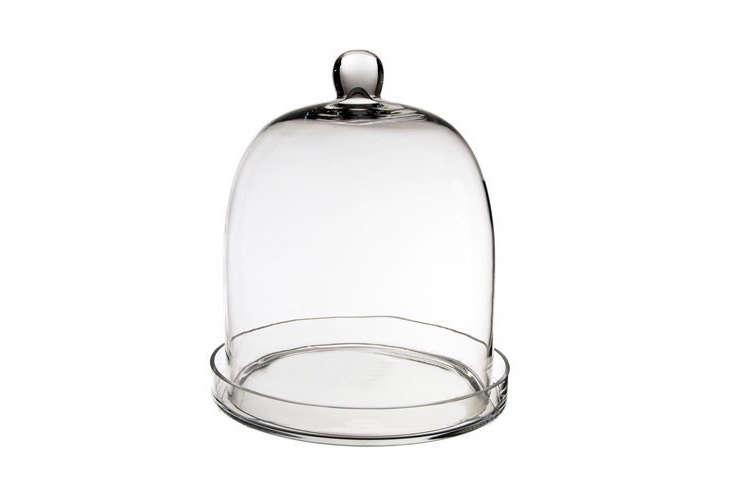 glass-cloche-terrarium-with-base-gardenista