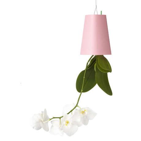 boskke-pink-vase-gardenista