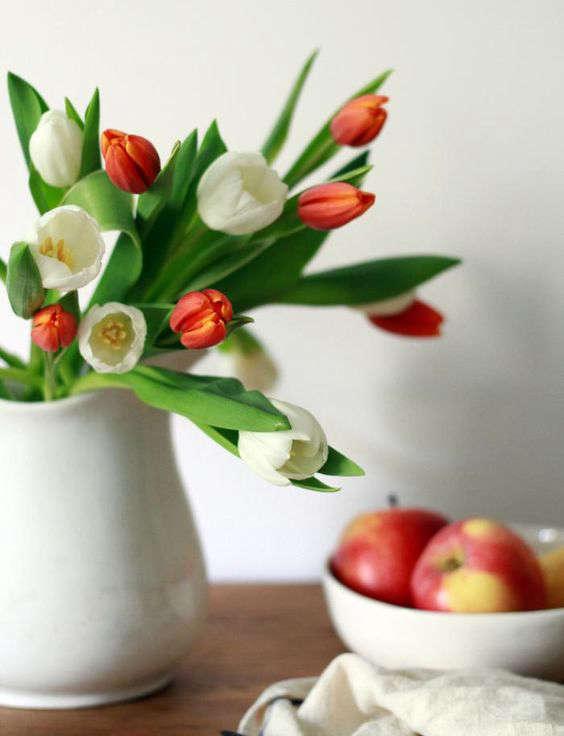 tulips-white-pitcher-apples-gardenista