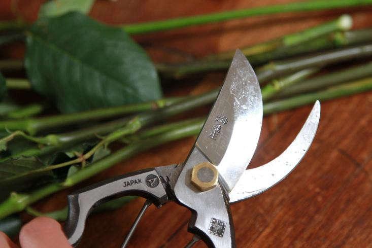 garden-pruners-2-gardenista