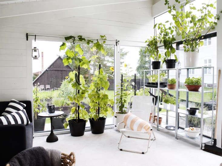 black-white-orangery-outbuilding-gardenista-black-pots