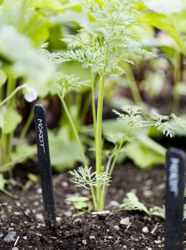 black-white-orangery-outbuilding-gardenista-carrots-plant-markers