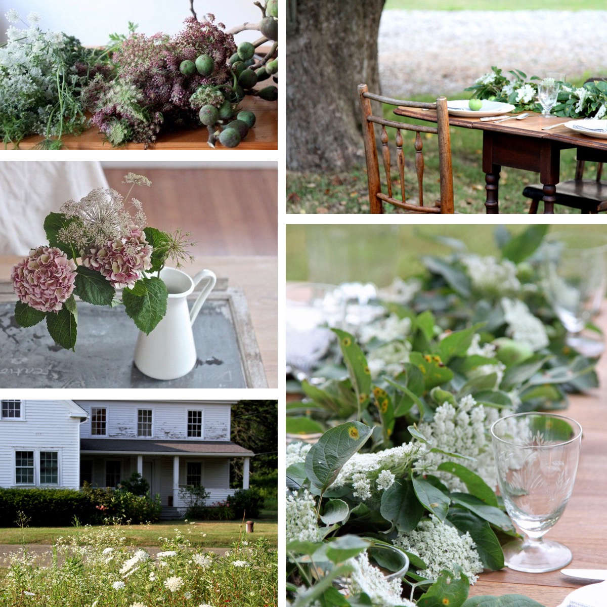 collage-queen-annes-lace-gardenista