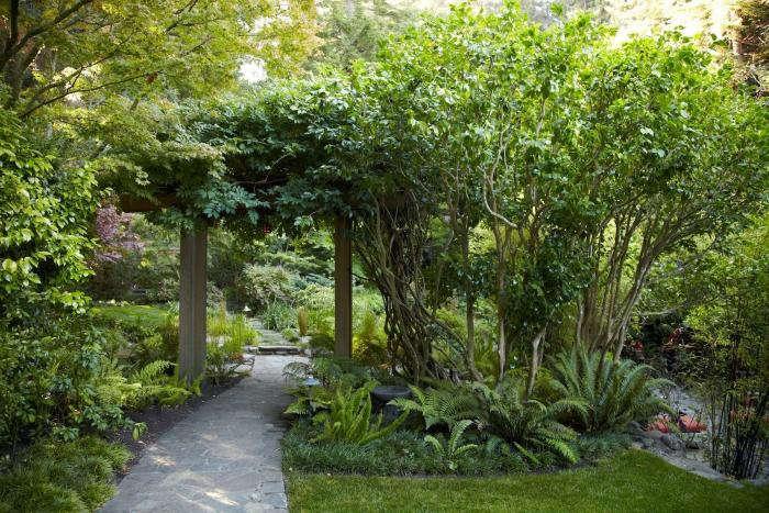 mill-valley-garden-katz-trellis-wisteria-gardenista