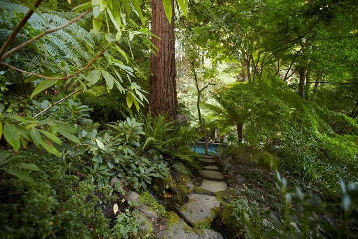 mill-valley-garden-katzes-paths-gardenista