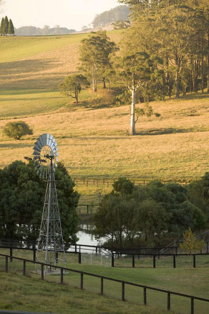 peter-fudge-windmill-australia-gardenista