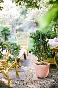 Kathleen Whitaker Echo Park Garden/Gardenista