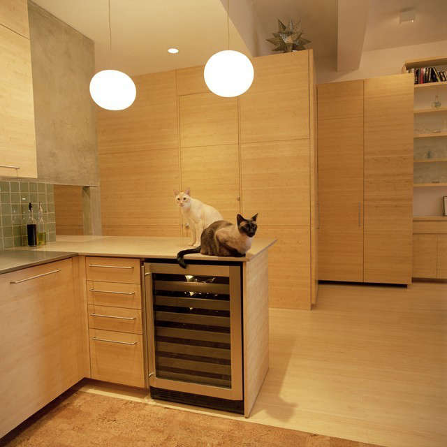 cats survey their hidden realm at Hanover Square: click here for more information on the Hanover Square Apartment Photo: Maggie Soladay
