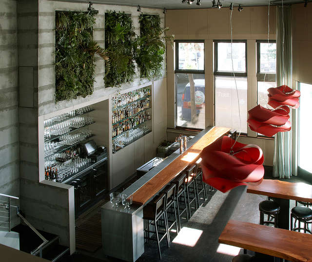Vertical gardens at Maven: Designed by Daniel Nolan, vertical gardens at a gourmet tavern in San Franciscos Lower Haight leave a verdant impression.