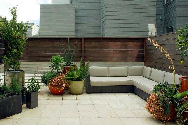 A San Francisco terrace garden &#8class=