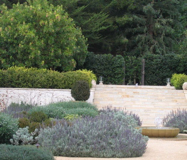 California: Arbutus Allée, upper level.: Southern California Estate, near the coast. Mediterranean plants used as a fragrant, drought tolerant ground cover. An allée of arbutus is planted above the steps. The fountain was designed by DNA and carved in India. Photo: © Deborah Nevins