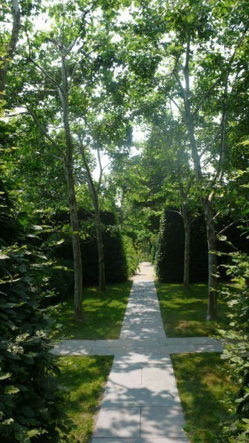 Long Island: Allée of Sycamores.: The paved path below the sycamores leads to the garden entrance. Photo: Deborah Nevins