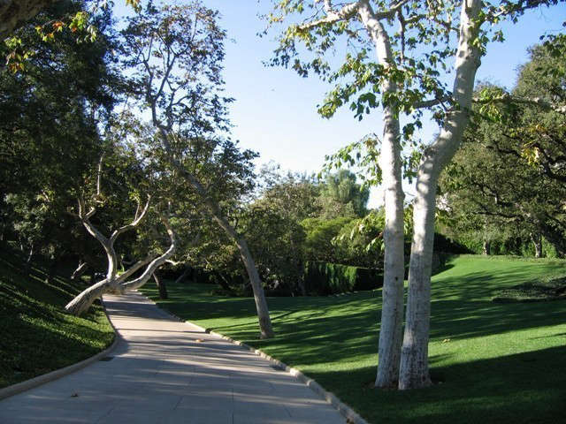 \10-acre Southern California Residence.: Plane Trees cast a dappled shade across the entry drive. Photo: Deborah Nevins
