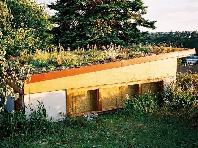 Harrison Architects Pacific Northwest Remodelista