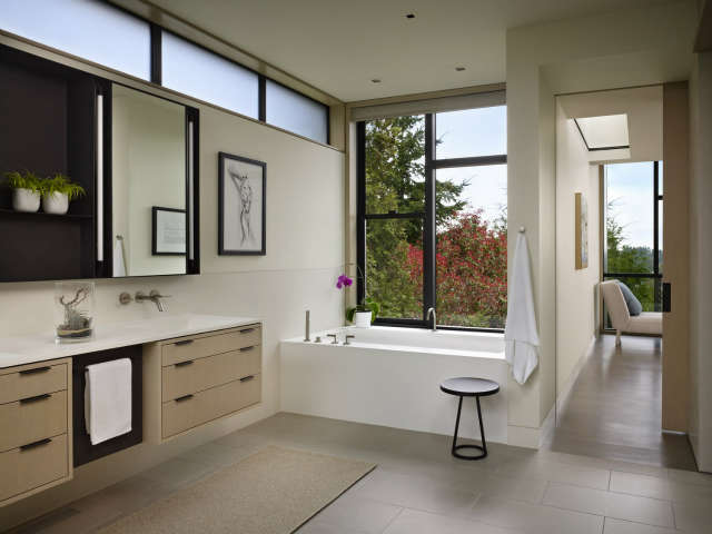 Hillside Modern Masterbath