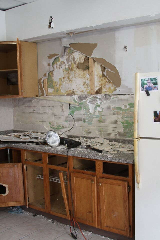 Ada-Egloff-Rick-Banister-kitchen-Before-shot-Remodelista-2