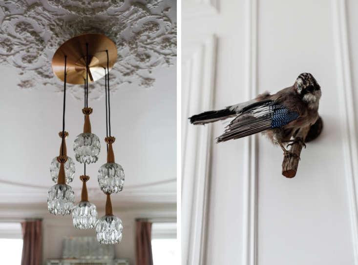 Alix-Thomsen-Bird-and-Light