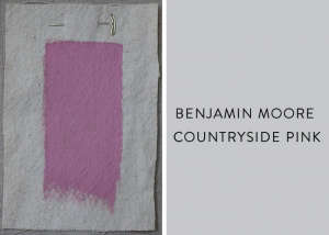 Benjamin Moore Countryside Pink, Best Pink Paint Colors, Remodelista