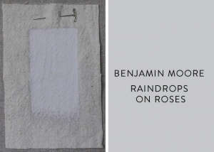 Benjamin Moore Raindrops on Roses, Best Pink Paint Colors, Remodelista