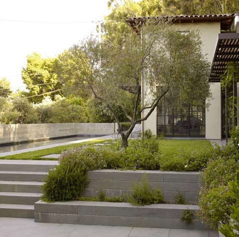 Blasen landscape architecture san francisco bay area for Landscape architects directory