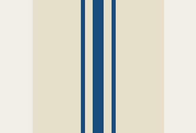 Blue-stripe-stair-Remodelista-05