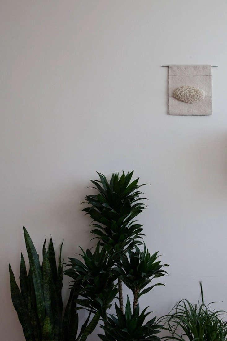 Caitlin-Emeritz-House-Visit-Michael-Muller-Remodelista-002