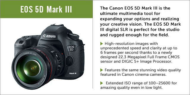 Canon-Camera-Sidebar-Remodelista