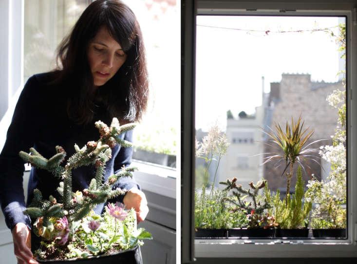 Clarisse-Demory-Planter-Windowbox