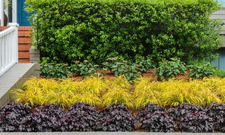 Creo Landscape Architecture portrait 7