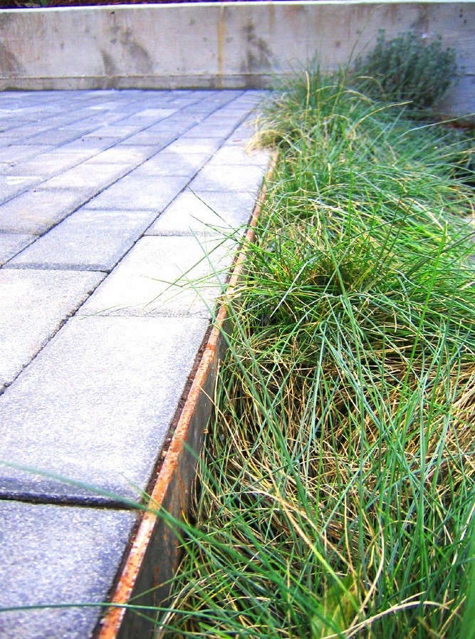 Creo_Landscapes_Montezuma_Residence_With_Pavers_and_Grasses_Gardenista