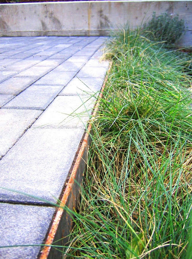 Creo Landscapes Montezuma Residence With Pavers and Grasses Gardenista
