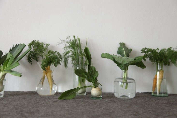 DIY-Vegetables-as-Decor-Alexa-Hotz-Remodelista-05