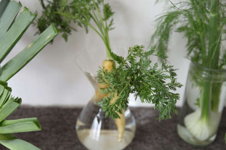 DIY-Vegetables-as-Decor-Alexa-Hotz-Remodelista-08