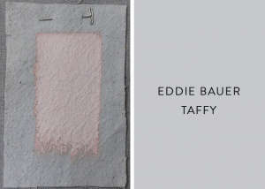 Eddie Bauer and Valspar Taffy, Best Pink Paint Colors, Remodelista