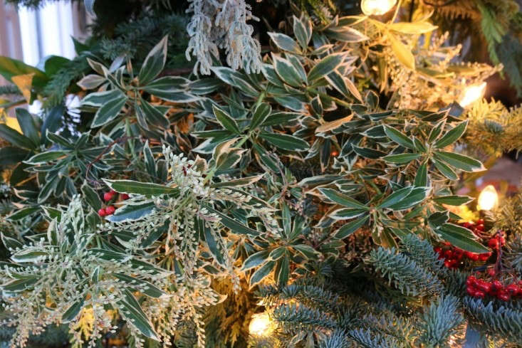 Foraged Christmas Tree With Several Kinds of Plants, Remodelista