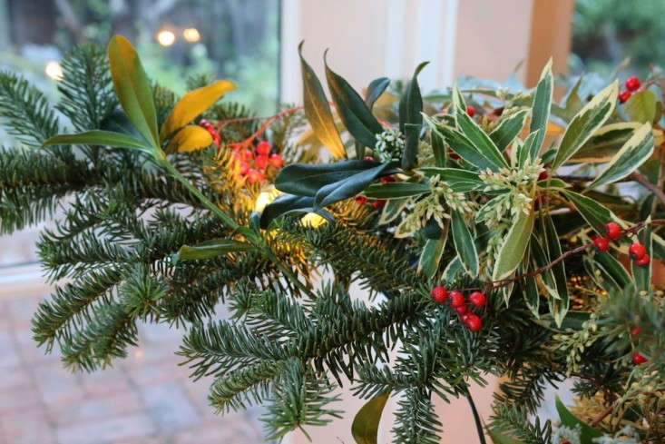 Foraged Christmas Tree with Green and Red Plants, Remodelista