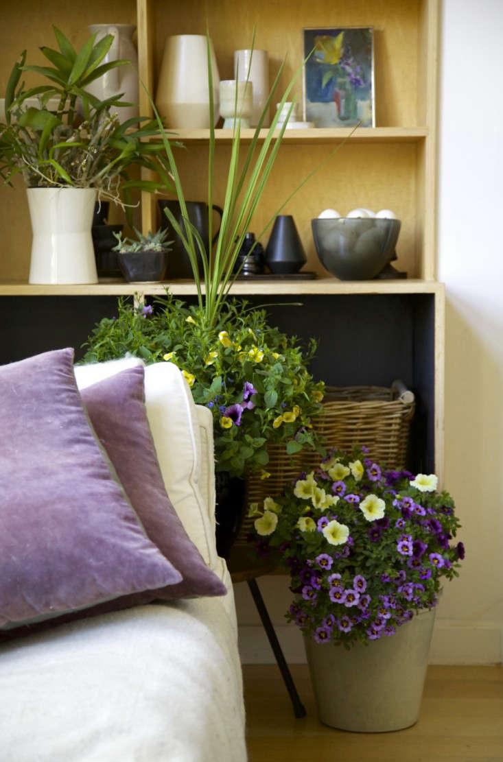 Home-Depot-Indoor-Planters-Remodelista-4a