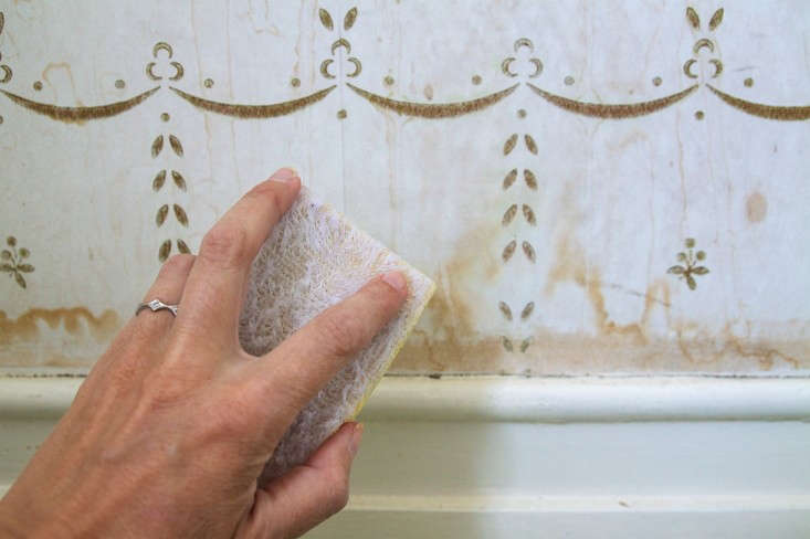 How to Clean Water Stains from Wall Paper, Step 4