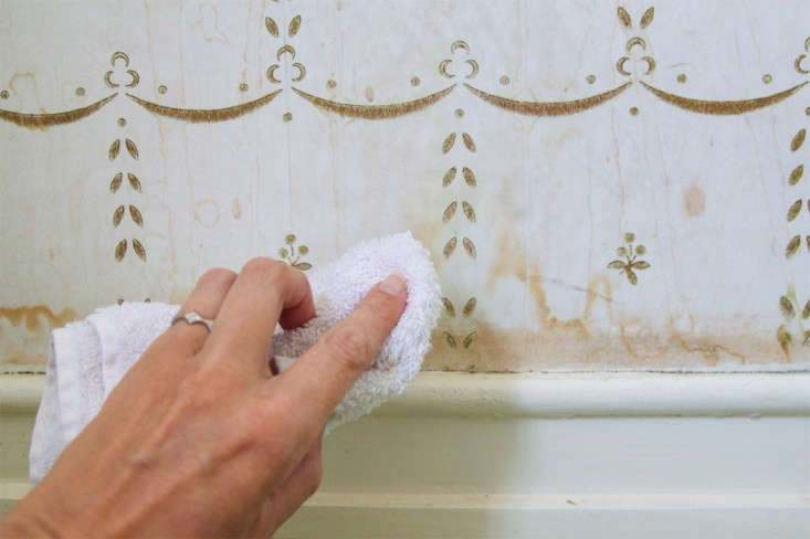 How to Clean Water Stains from Wallpaper, step 3, Remodelista_edited-1