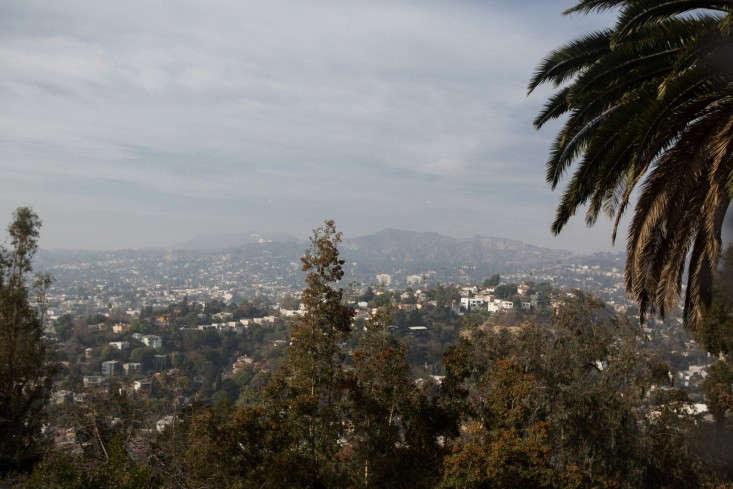 Kelly-Lamb-Los-Angeles-view