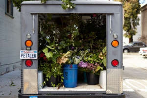 The Petaler in SF | Gardenista